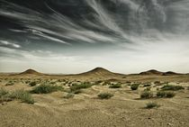 THE GREAT WIDE OPEN – GOLDEN GOBI XXI by Thomas Kretzschmar