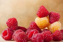 red and golden raspberry fruits von Arletta Cwalina