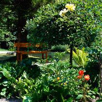 Gartenoase im Sommer. von li-lu