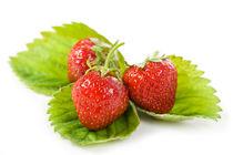 Three fresh strawberries fruits von Arletta Cwalina
