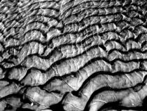 Sandstrukturen04 von Wolfgang Wende