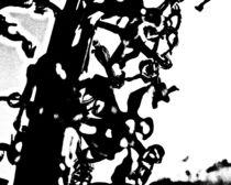 Pflanzenstruktur03 von Wolfgang Wende