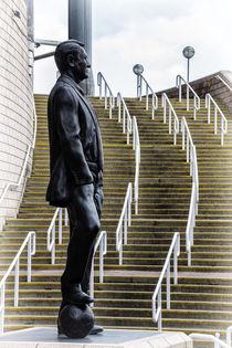 Sir Bobby by David Pringle