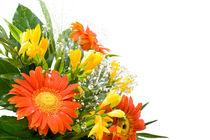 Arranged wedding handheld bouquet by Arletta Cwalina