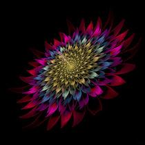 Red Bloom by Viktor Peschel