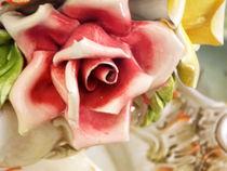 Porcelaine Rose by bebra