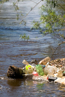 plastic bottles damage river by Arletta Cwalina