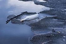bottle garbage on melting ice von Arletta Cwalina
