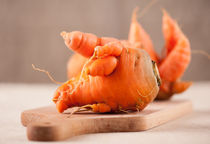 Fresh raw deformed carrot roots by Arletta Cwalina