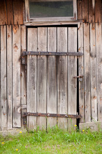 shed dilapidated cubby door by Arletta Cwalina
