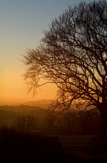 Raddon Hill at sunset by Pete Hemington