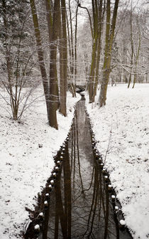 Stream in winter Royal Baths Park von Arletta Cwalina
