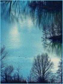 ~~ Wasserspiegelung Natur ~~ von Sandra  Vollmann