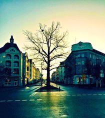 Einsamer Baum von Ligia Fascioni