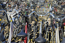 bicycle-parking von JACINTO TEE