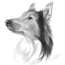 Dog Portrait von cvill