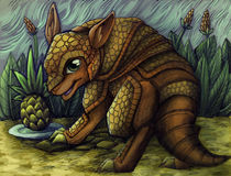 armadillo and ananas by sushy