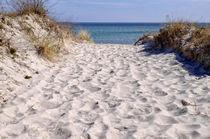 Weg-zum-strand