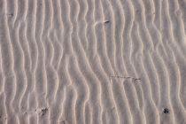 Spuren im Sand von Jörg Hoffmann