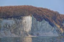 Kreidefelsen Insel Rügen von Jörg Hoffmann