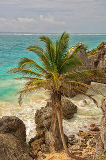 Beach of Tulum by noxfotografie