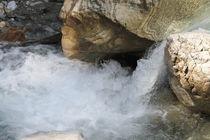 Wasser,Schildkröte? von Robert Barion