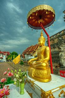 Sheltered Buddha  von Rob Hawkins
