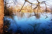 Blauer See mit Baeumen von Anke Franikowski