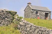 Cottage-1a