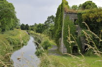 Printable-canal-near-robertstown-2