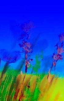 grases von Maria-Anna  Ziehr