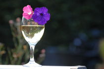 Wine and Flowers on a Summers Day von Dave  Byrne