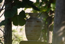 A Wine Urn in a shady background von Dave  Byrne