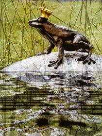 Froschkönig II von Chris Berger