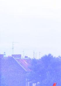 Über den Dächern Berlins von Sophie Krause