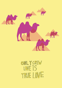 Crew Love Is True Love by Sophie Krause