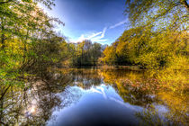 The Mirror Pond von David Pyatt
