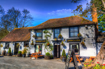 The Theydon Oak Pub by David Pyatt