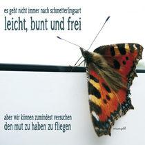 Schmetterlingsart by versengeld