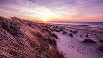 Strand von Renesse von Daniel Heine