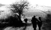 Neujahrsspaziergang by Dagmar Kesting