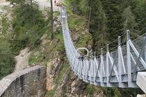 Hängebrücke von Robert Barion