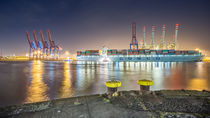 Container Terminal Tollerort III by photoart-hartmann