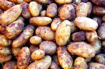 Kartoffeln - potatoes von mateart