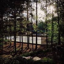 Tennis Courts by Thomas Polk