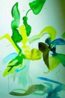 Orchid von Maria-Anna  Ziehr