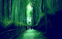 Bamboo forest von Giorgio Giussani