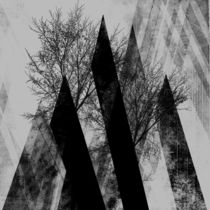 TREES V by Pia Schneider