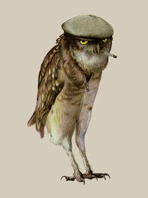 trendy owl by Katerina Kalinich