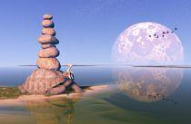 Zen Tortoise by Russell Smeaton